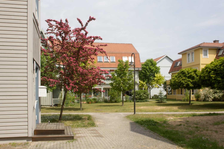 Buntes-Borkwalde-039