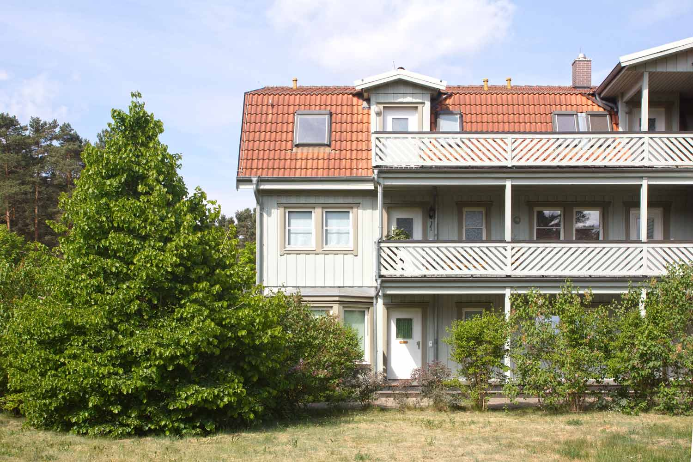 Buntes-Borkwalde-112