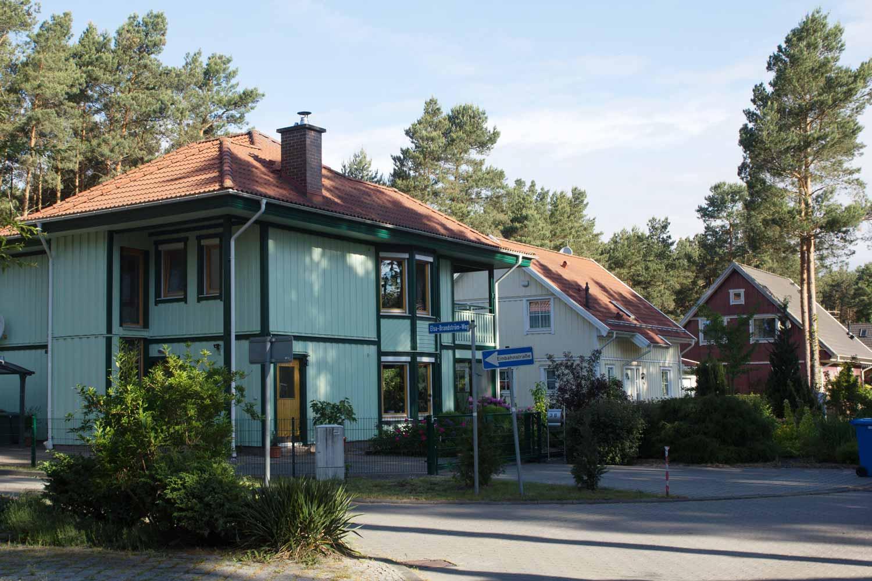Buntes-Borkwalde-163