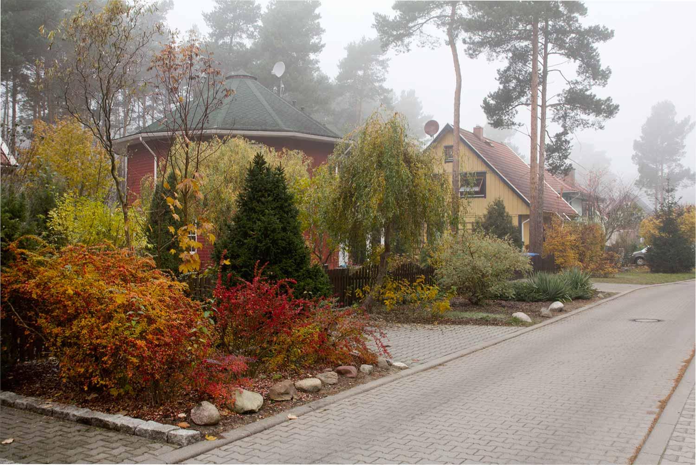 Buntes-Borkwalde-204